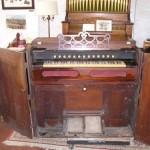 Acclimatized Folding Organ